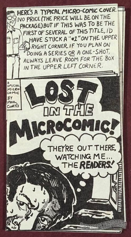 Lost in the Microcomic!