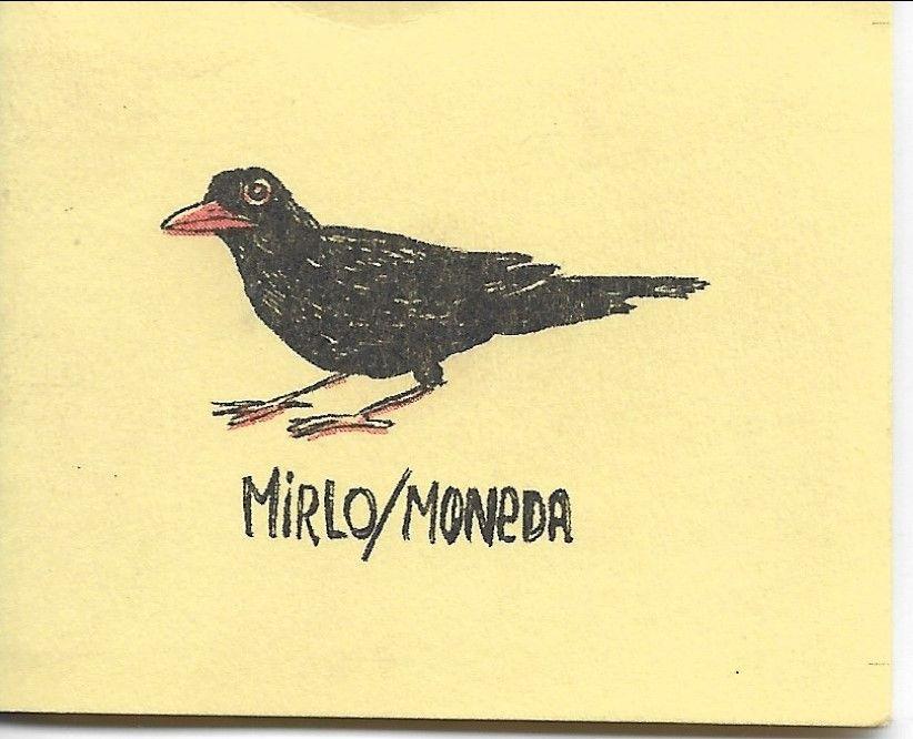 Mirlo/Moneda