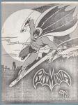 Batmania #19