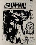 Shaman #45